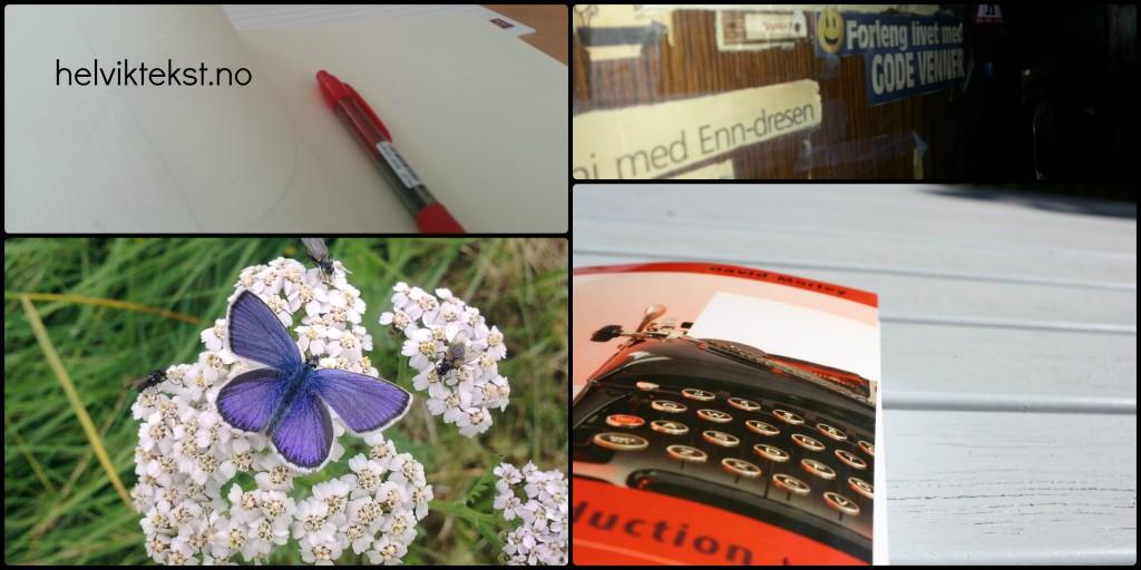 Raud penn, vegg med avisutklypp, sommarfugl og bok med bilete av skrivemaskin.