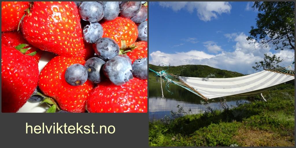Bilete av jordbær og blåbær, og eit bilete av ei hengekøye på ei øy.