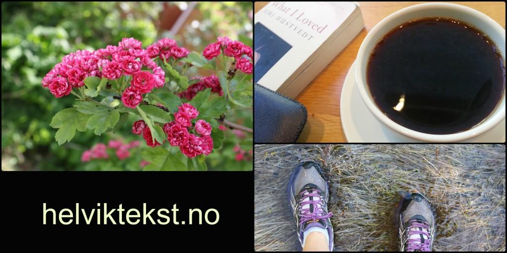 Fotografi av eit blømande tre, ein kaffikopp og ei bok og joggeskokledde føter i ei myr.