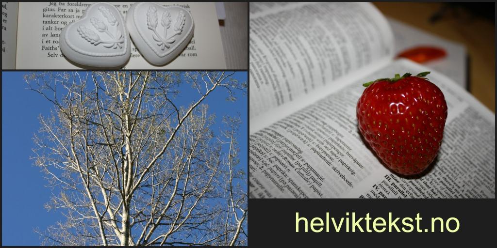 Bilete av to gipshjarter oppå ei oppslegen bok, eit raudt jordbær på ei oppslegen ordbok, eit nake tre ute.
