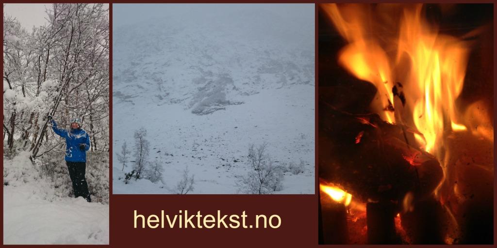Bilete av ei dame som ristar i eit tre fullt av snø. Snølandskap med fjell. Bilete av flammane i ein omn.