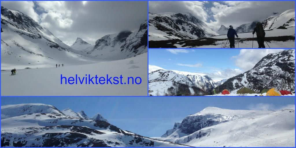 Ulike bilete av snølandskap