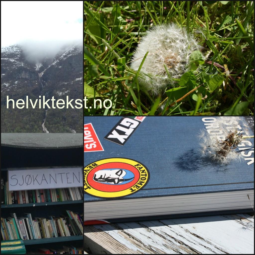 Ei bokhylle full av bøker ute i naturen. Bilete av blant anna Fantomet på Nostalgisk orbok av Petter Schjerven. Kvit løvetann i graset.