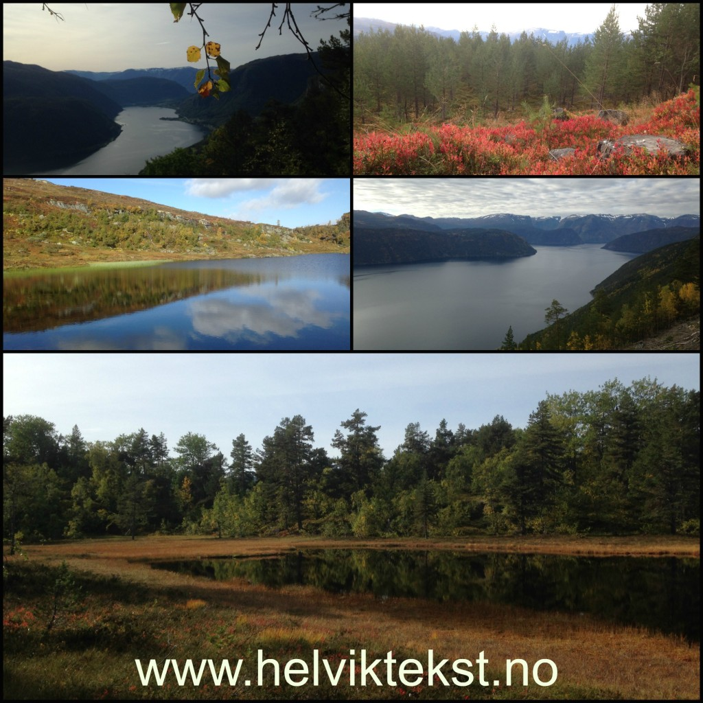 Haustbilete av Sognefjorden, av skog og av fjellvatn.