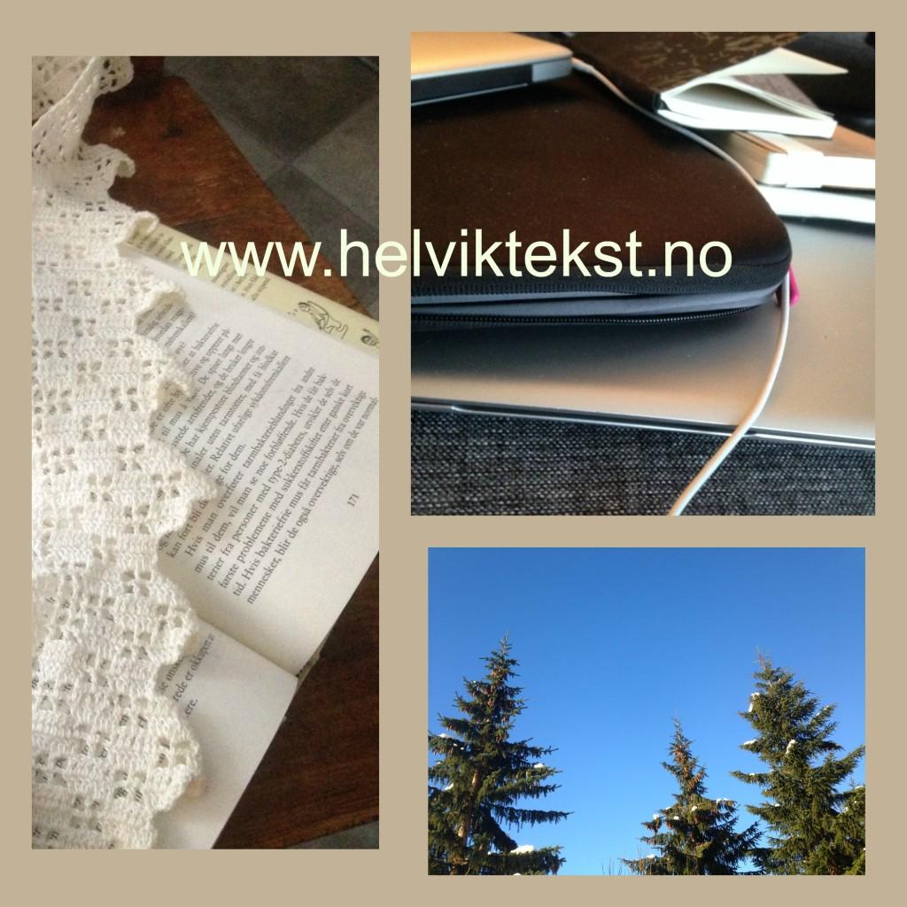 Bilete av ei opa bok, notatbøker og datamaskin og bartre mot ein blå himmel.
